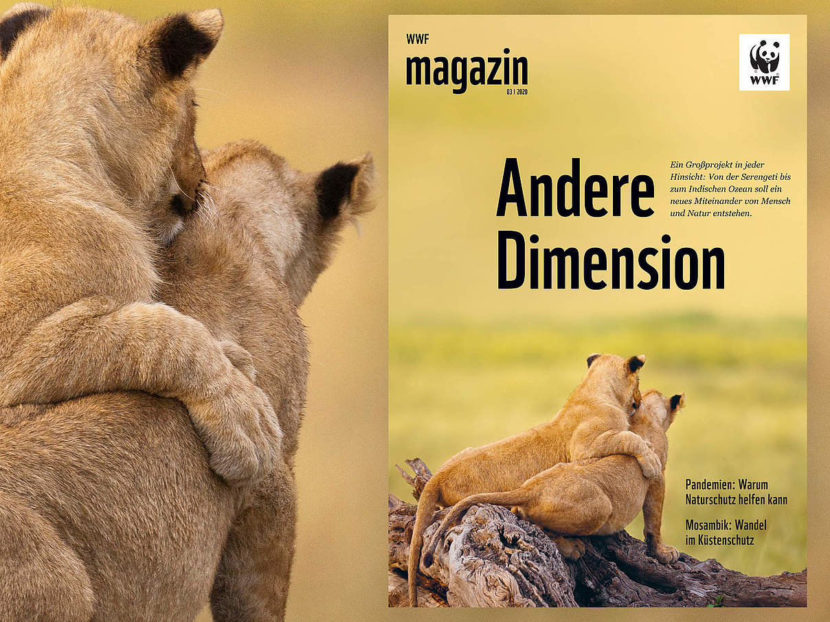WWF Magazin 03/2020 © juniors@wildlife/Biosphoto