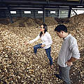 Holzmarkt in China © WWF-US / Zachary Bako
