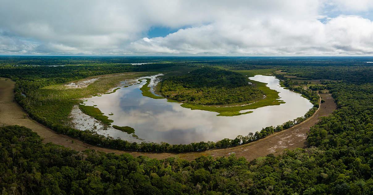 Chiripiquete: Waldvernichtung bedroht Naturparadies