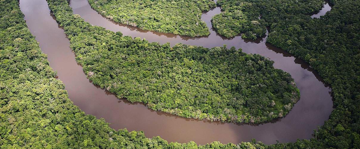 Regenwald Amazonas © Brent Stirton / Getty Images