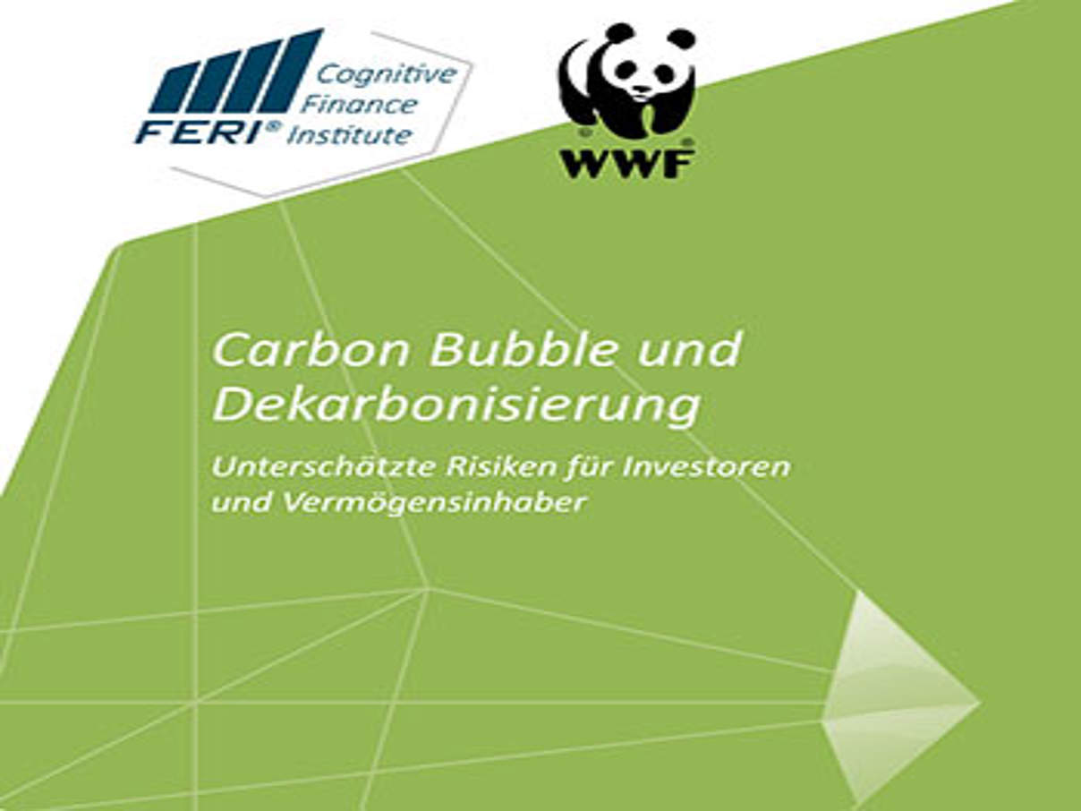 """Carbon Bubble""-Studie des WWF / FERI Cognitive Finance Institute"