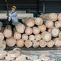 Holz-Fabrik in China © Theodore Kaye / WWF China