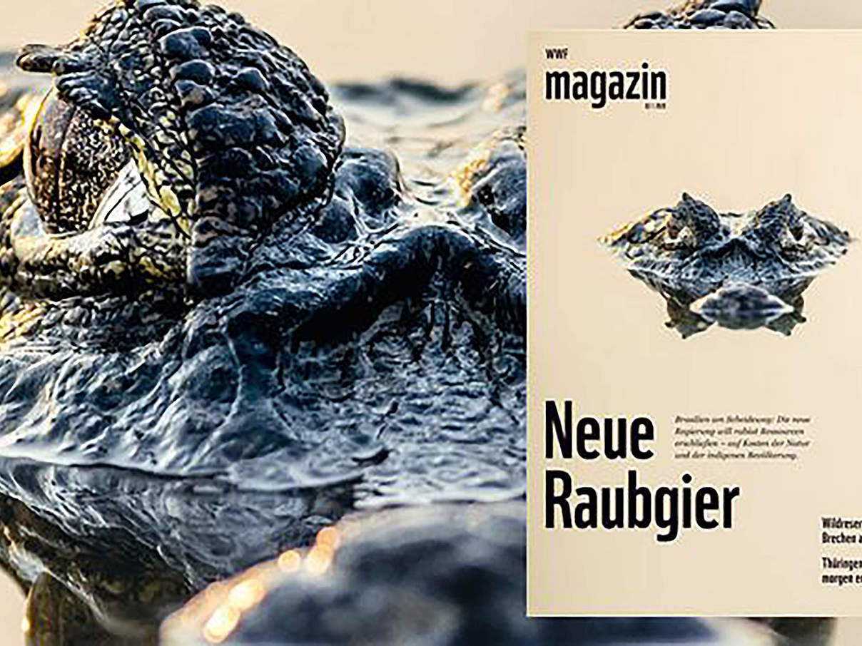 WWF Magazin Ausgabe April © WWF