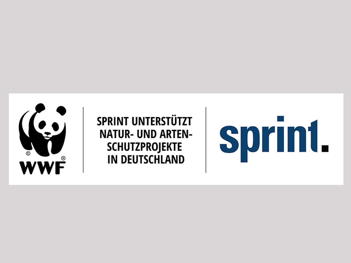 Sprint / WWF Kooperation